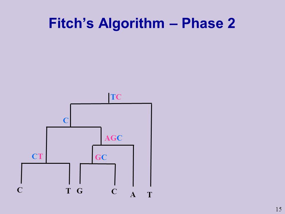 15 Fitch's Algorithm – Phase 2 TCTC T CTCT C C T A G C AGC GCGC