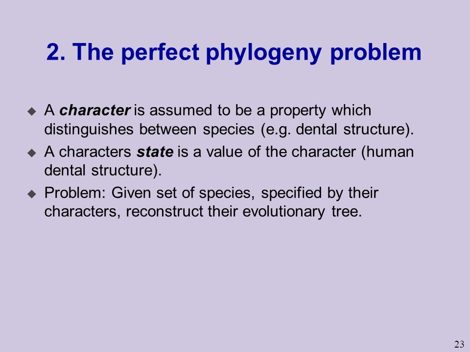 23 2. The perfect phylogeny problem u A character is assumed to be a property which distinguishes between species (e.g. dental structure). u A charact