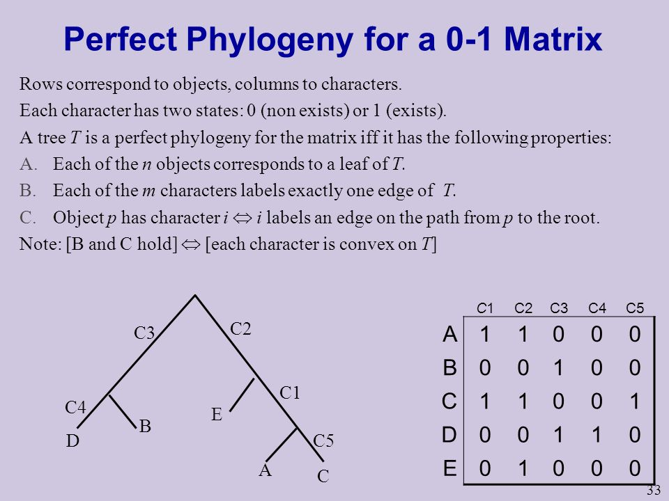 33 Perfect Phylogeny for a 0-1 Matrix Rows correspond to objects, columns to characters.