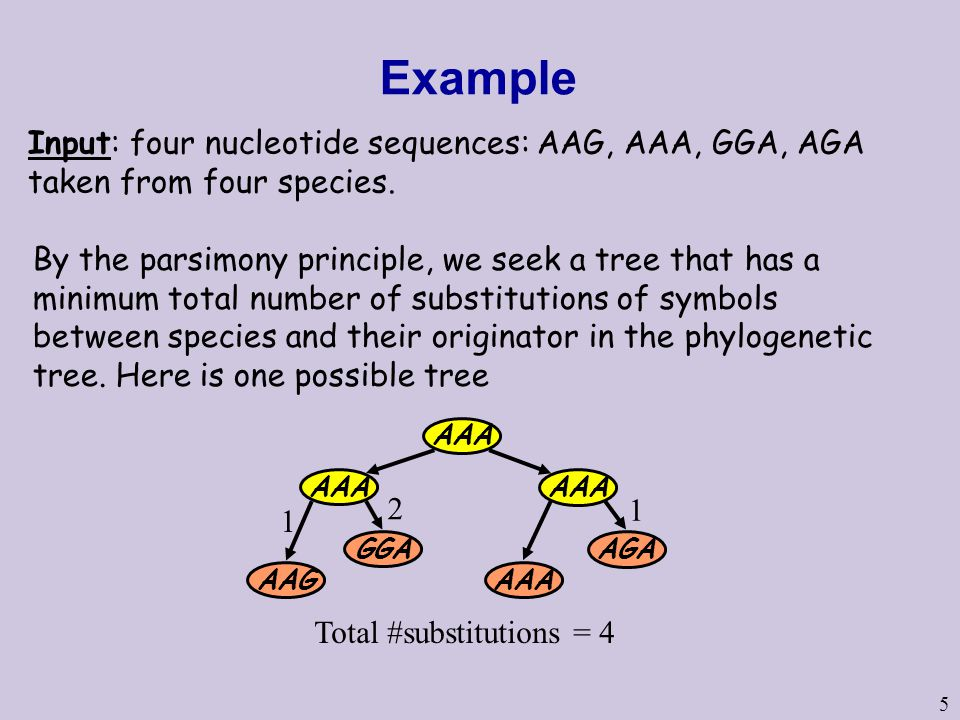 5 Example Input: four nucleotide sequences: AAG, AAA, GGA, AGA taken from four species.