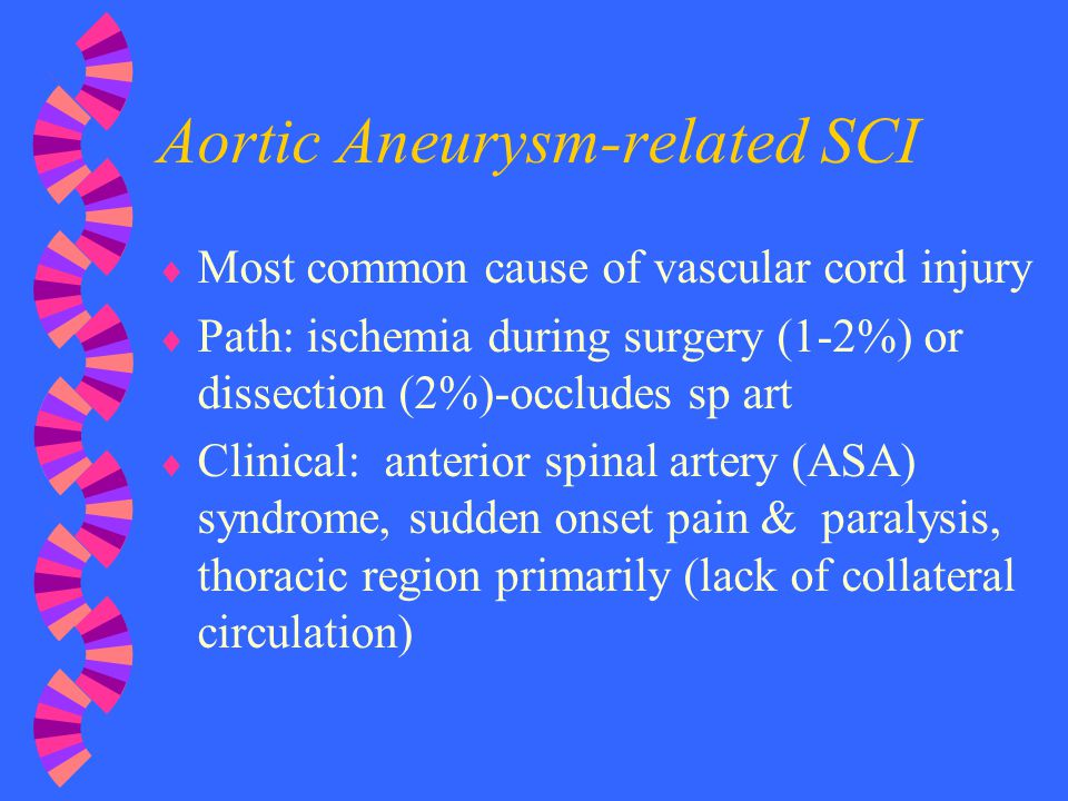Aortic Aneurysm-related SCI  Most common cause of vascular cord injury  Path: ischemia during surgery (1-2%) or dissection (2%)-occludes sp art  Cl