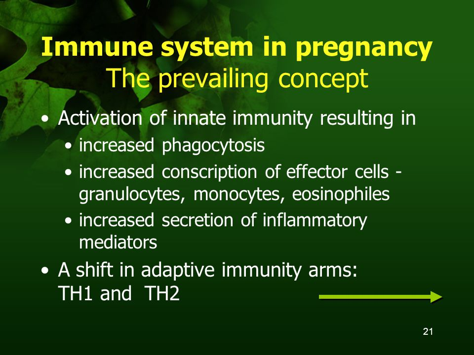 21 Immune system in pregnancy The prevailing concept Activation of innate immunity resulting in increased phagocytosis increased conscription of effector cells - granulocytes, monocytes, eosinophiles increased secretion of inflammatory mediators A shift in adaptive immunity arms: TH1 and TH2