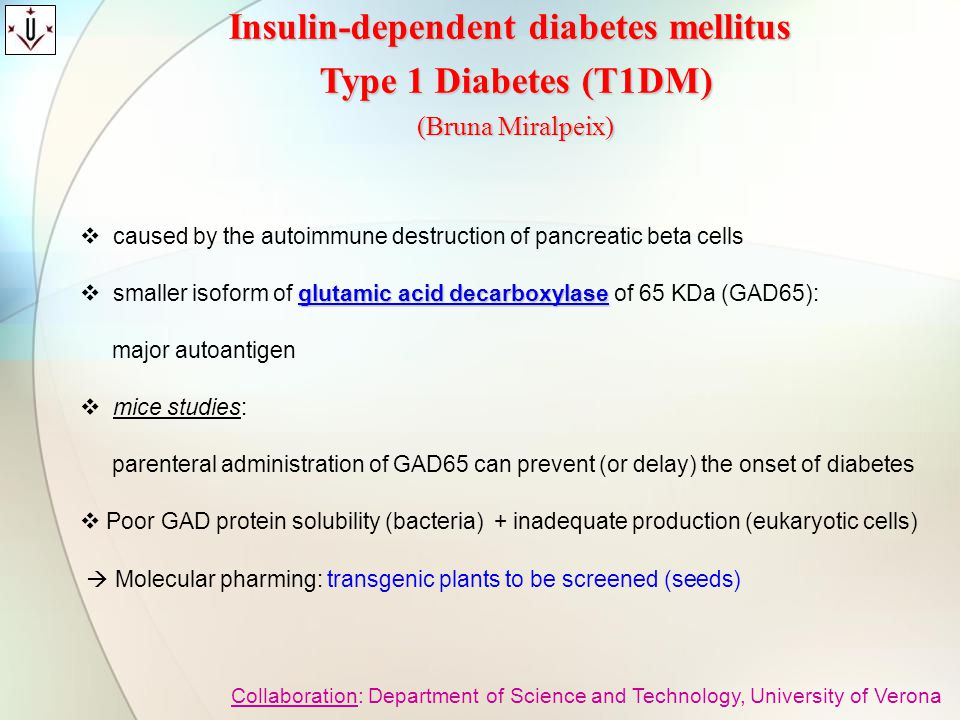  caused by the autoimmune destruction of pancreatic beta cells glutamic acid decarboxylase  smaller isoform of glutamic acid decarboxylase of 65 KDa