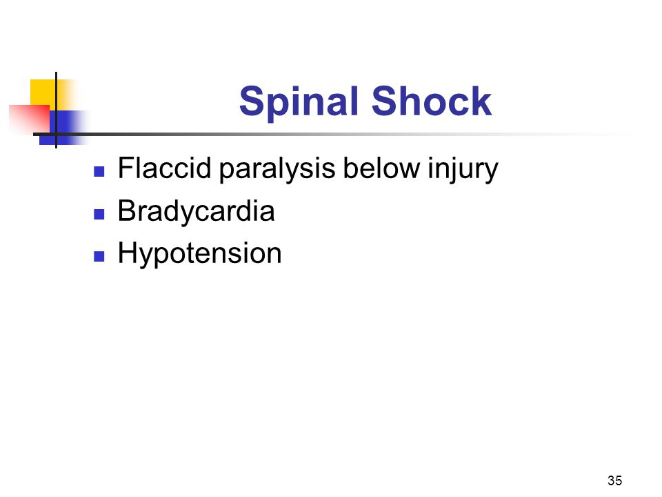 35 Spinal Shock Flaccid paralysis below injury Bradycardia Hypotension