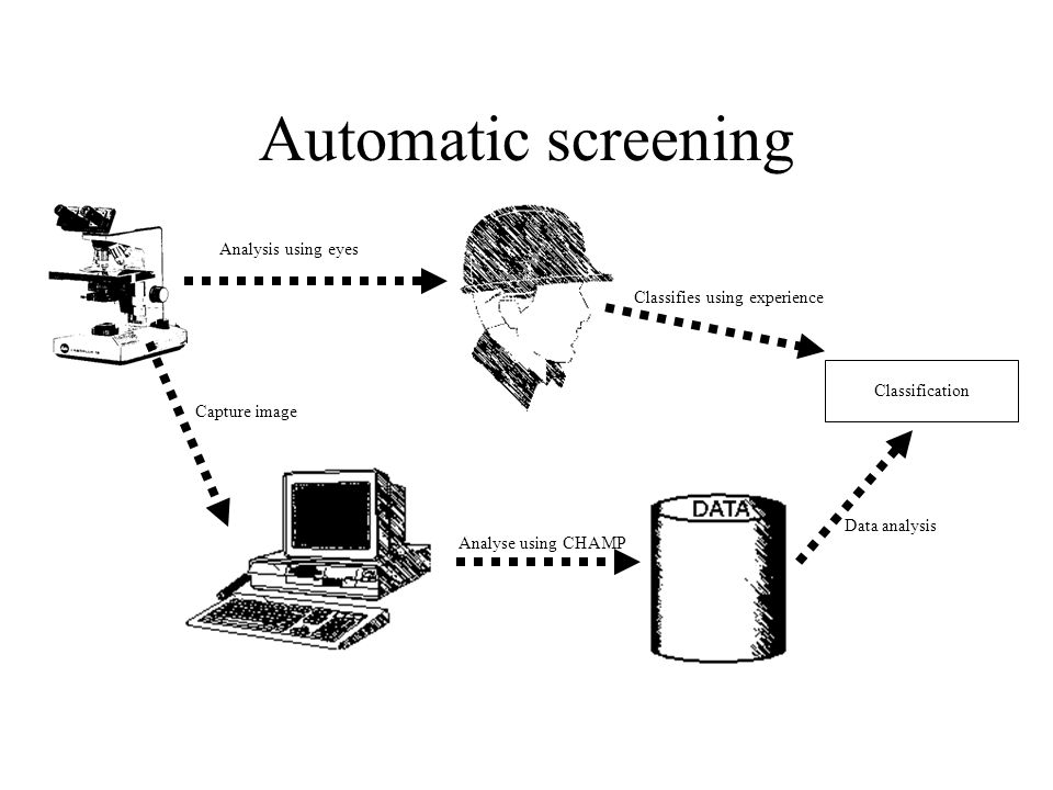 Automatic screening Capture image Analyse using CHAMP Data analysis Classification Analysis using eyes Classifies using experience
