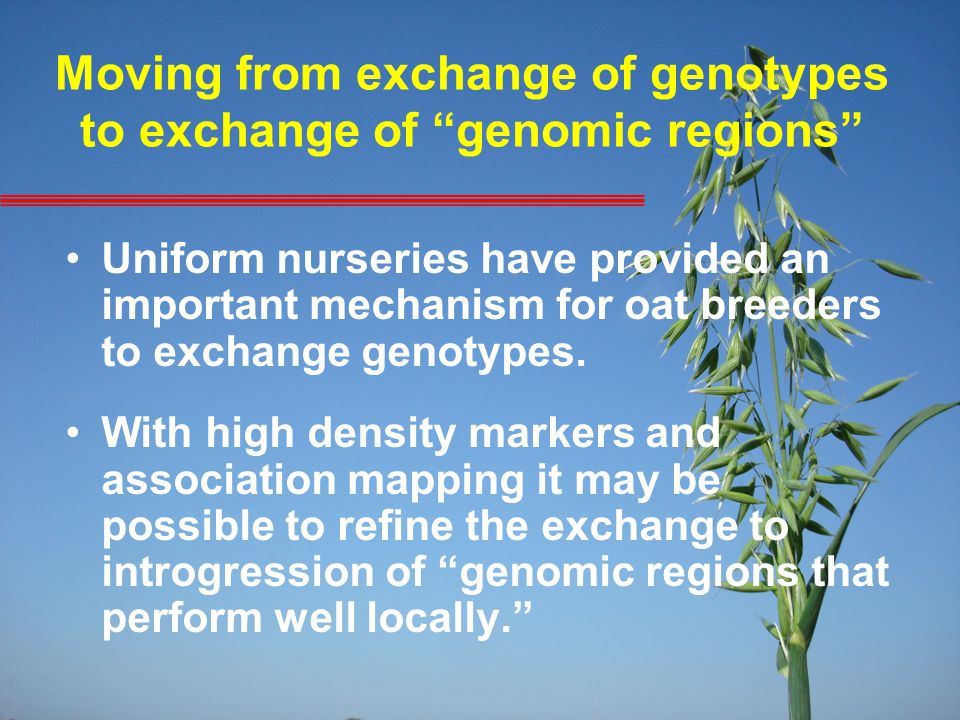 "Moving from exchange of genotypes to exchange of ""genomic regions"" Uniform nurseries have provided an important mechanism for oat breeders to exchange"