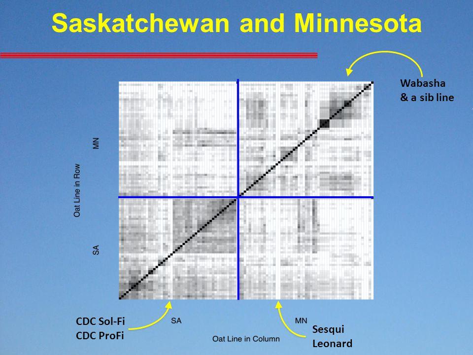 Saskatchewan and Minnesota CDC Sol-Fi CDC ProFi Sesqui Leonard Wabasha & a sib line