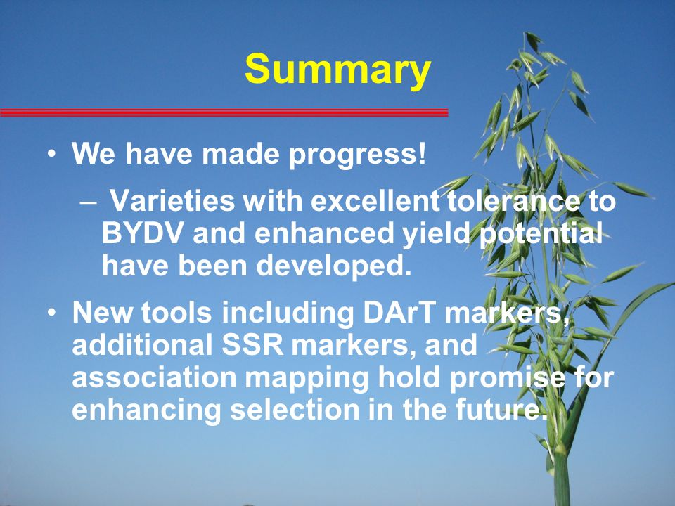 Summary We have made progress! – Varieties with excellent tolerance to BYDV and enhanced yield potential have been developed. New tools including DArT