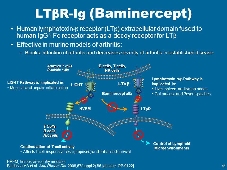 48 LTβR-Ig (Baminercept) Human lymphotoxin-  receptor (LT  ) extracellular domain fused to human IgG1 Fc receptor acts as a decoy receptor for LT 
