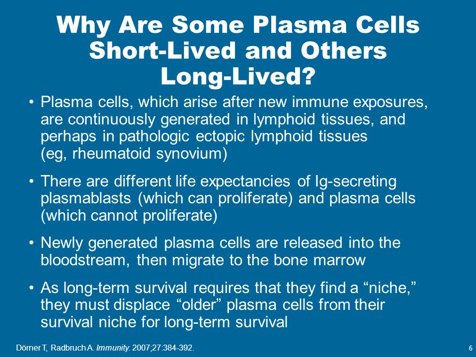 6 Why Are Some Plasma Cells Short-Lived and Others Long-Lived? Plasma cells, which arise after new immune exposures, are continuously generated in lym