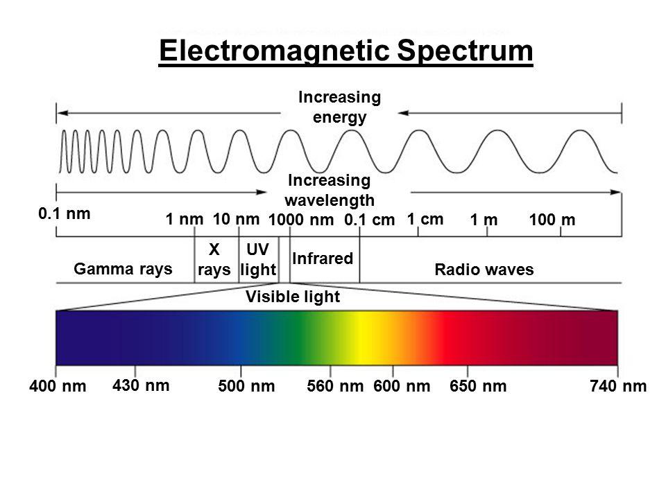 Increasing energy Increasing wavelength 0.1 nm 1 nm10 nm 1000 nm0.1 cm 1 cm 1 m100 m Gamma rays UV light X rays Infrared Radio waves 400 nm 430 nm 500 nm560 nm600 nm650 nm740 nm Visible light Electromagnetic Spectrum