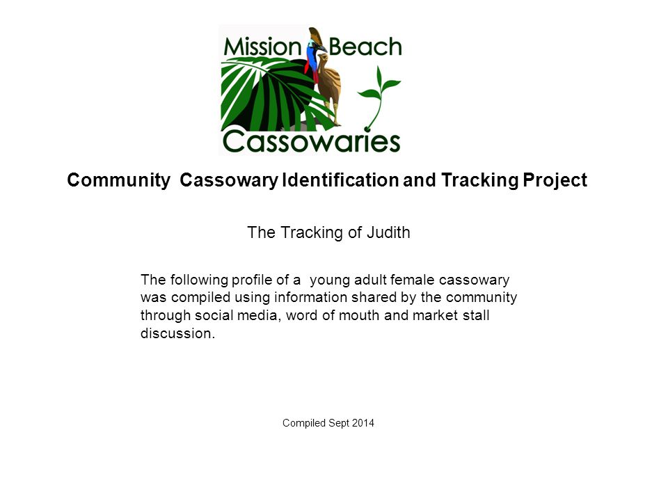 Community Cassowary Identification and Tracking Project The Tracking of Judith Compiled Sept 2014 The following profile of a young adult female cassowary was compiled using information shared by the community through social media, word of mouth and market stall discussion.