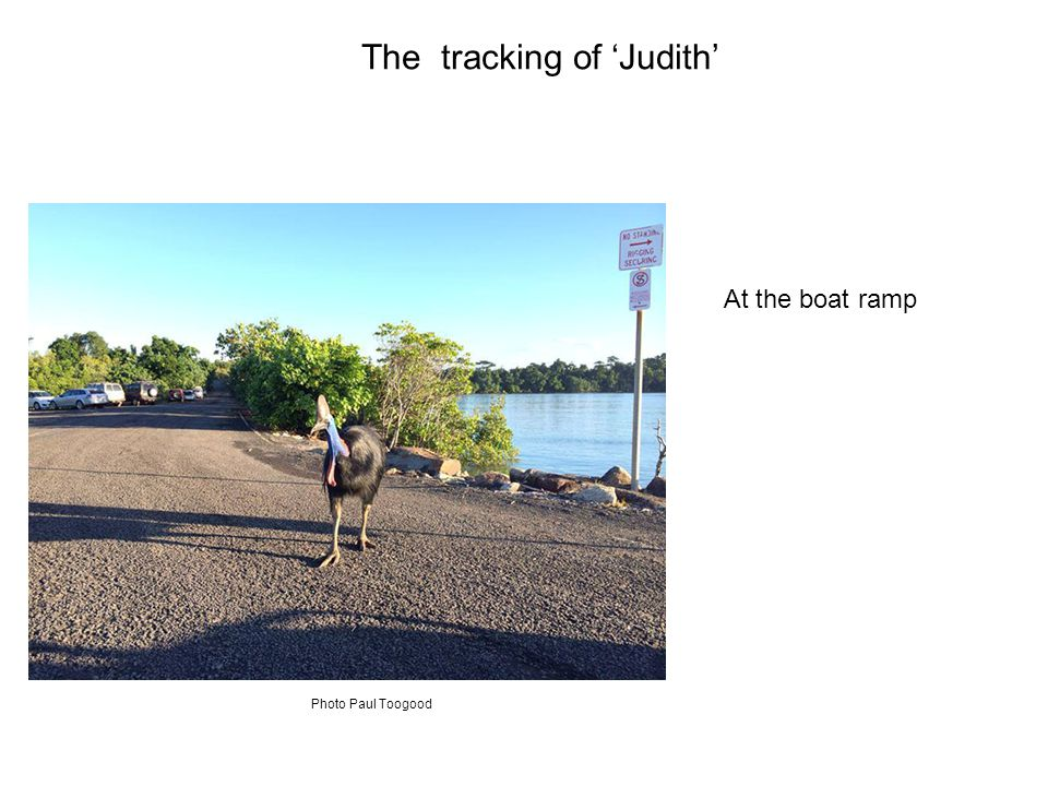 At the boat ramp The tracking of 'Judith' Photo Paul Toogood