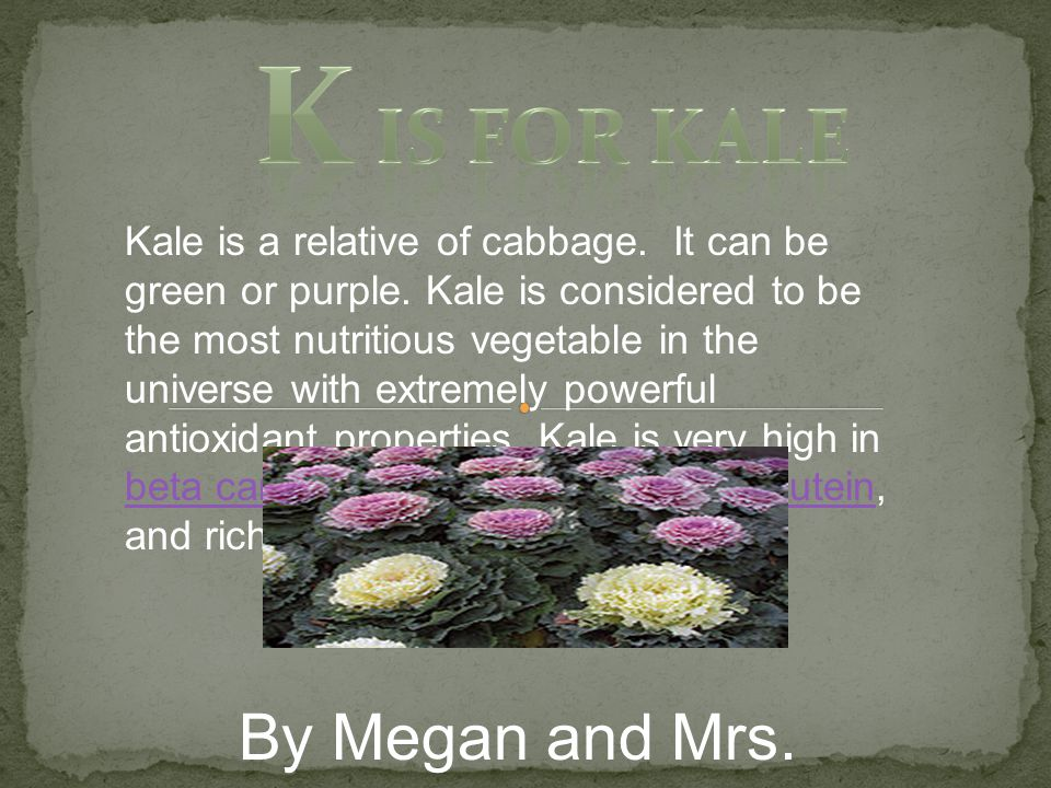 Kale is a relative of cabbage.It can be green or purple.