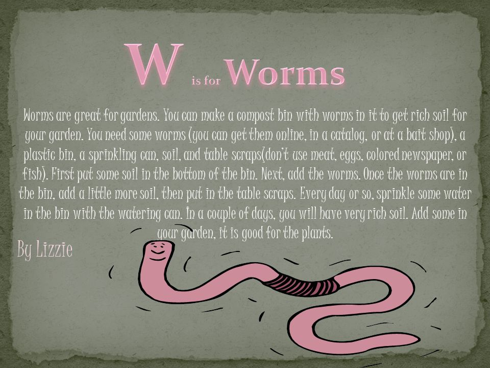 Worms are great for gardens.