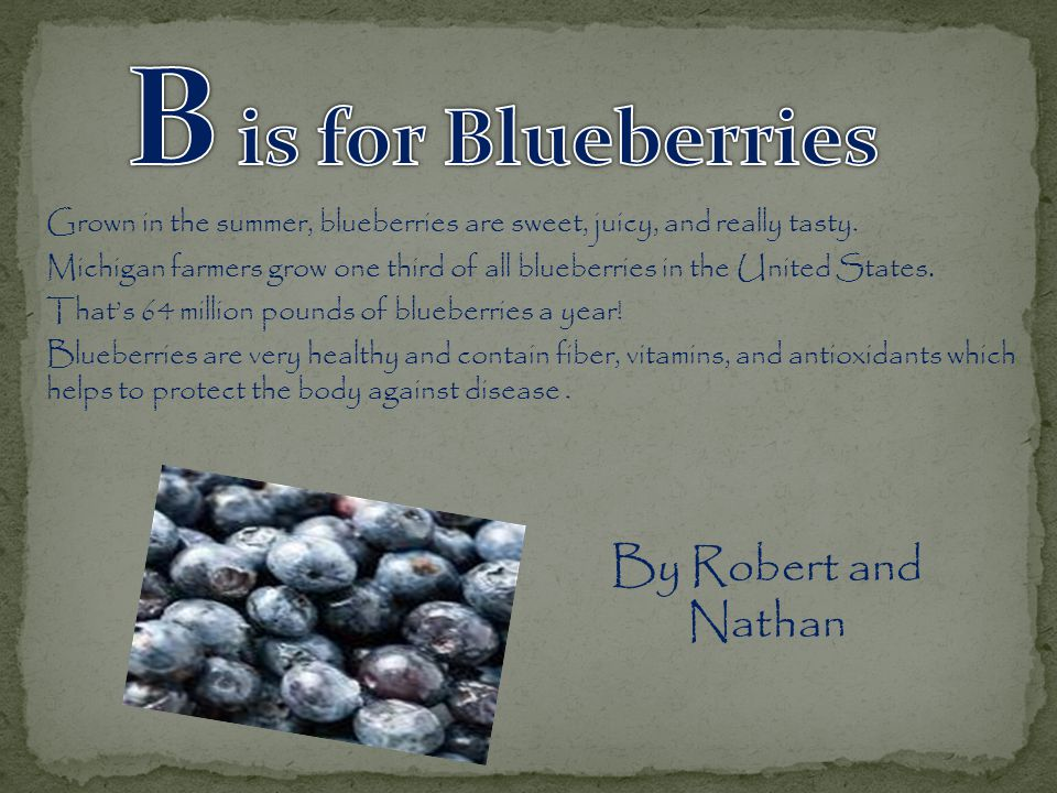 Grown in the summer, blueberries are sweet, juicy, and really tasty.