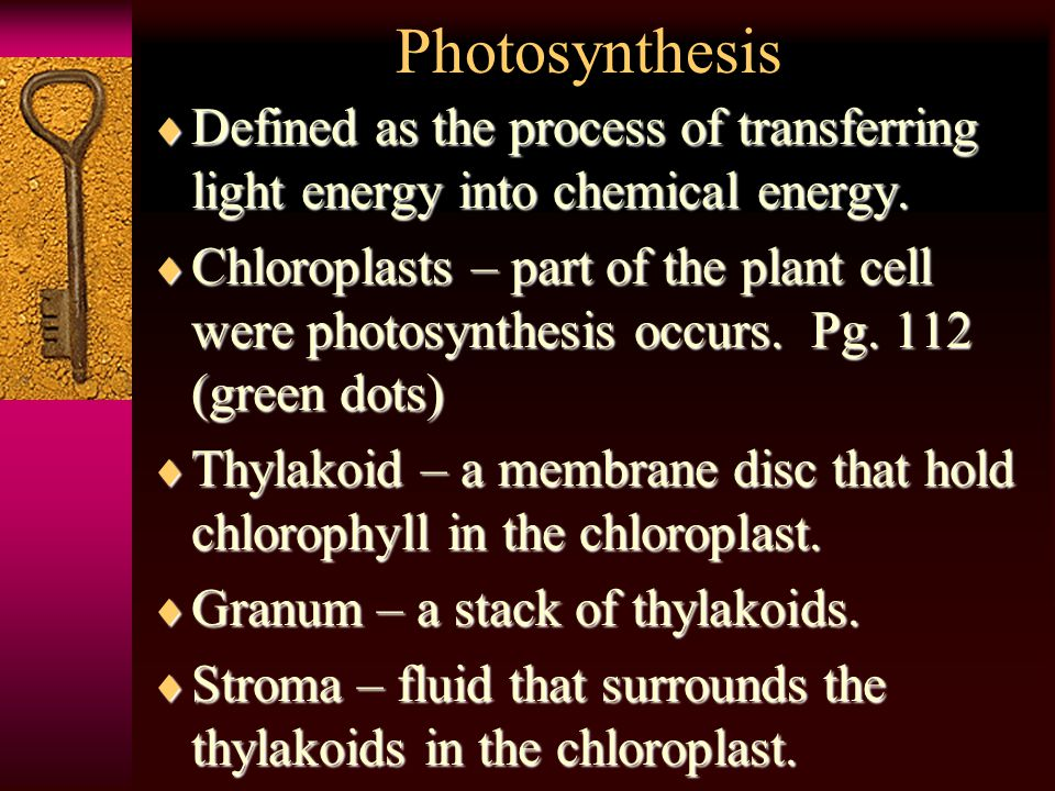 Photosynthesis  Defined  Defined as the process of transferring light energy into chemical energy.