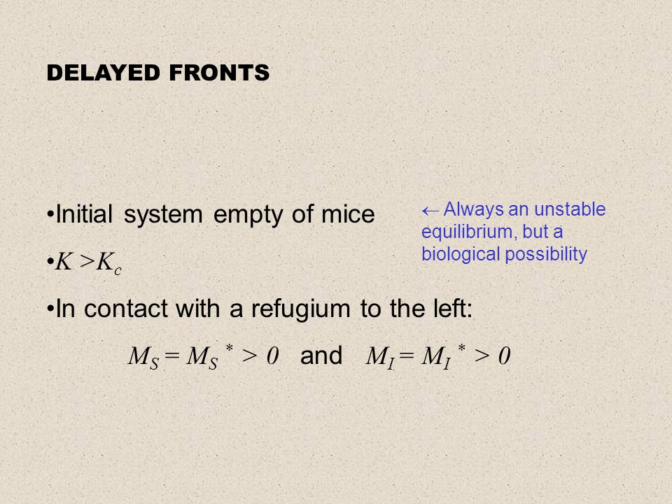 Initial system empty of mice K >K c In contact with a refugium to the left: M S = M S * > 0 and M I = M I * > 0  Always an unstable equilibrium, but a biological possibility DELAYED FRONTS