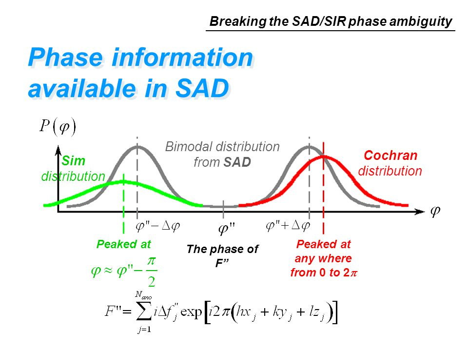 """Bimodal distribution from SAD The phase of F"""" Phase information available in SAD Cochran distribution Peaked at any where from 0 to 2  Peaked at Sim"""