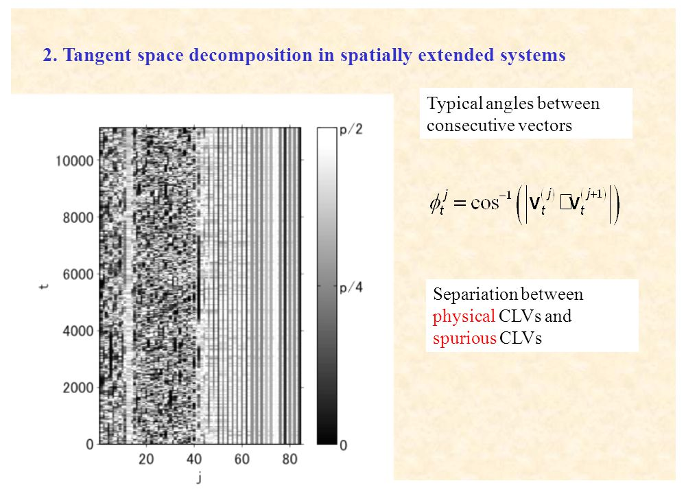 2. Tangent space decomposition in spatially extended systems Typical angles between consecutive vectors Separiation between physical CLVs and spurious