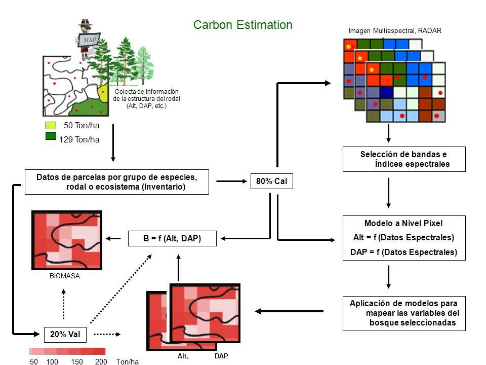 Colecta de información de la estructura del rodal (Alt, DAP, etc.) BIOMASA Datos de parcelas por grupo de especies, rodal o ecosistema (Inventario) 80% Cal 20% Val B = f (Alt, DAP) Selección de bandas e Índices espectrales Modelo a Nivel Pixel Alt = f (Datos Espectrales) DAP = f (Datos Espectrales) Aplicación de modelos para mapear las variables del bosque seleccionadas Alt, DAP Imagen Multiespectral, RADAR Carbon Estimation 50 Ton/ha 129 Ton/ha 50 100 150 200 Ton/ha