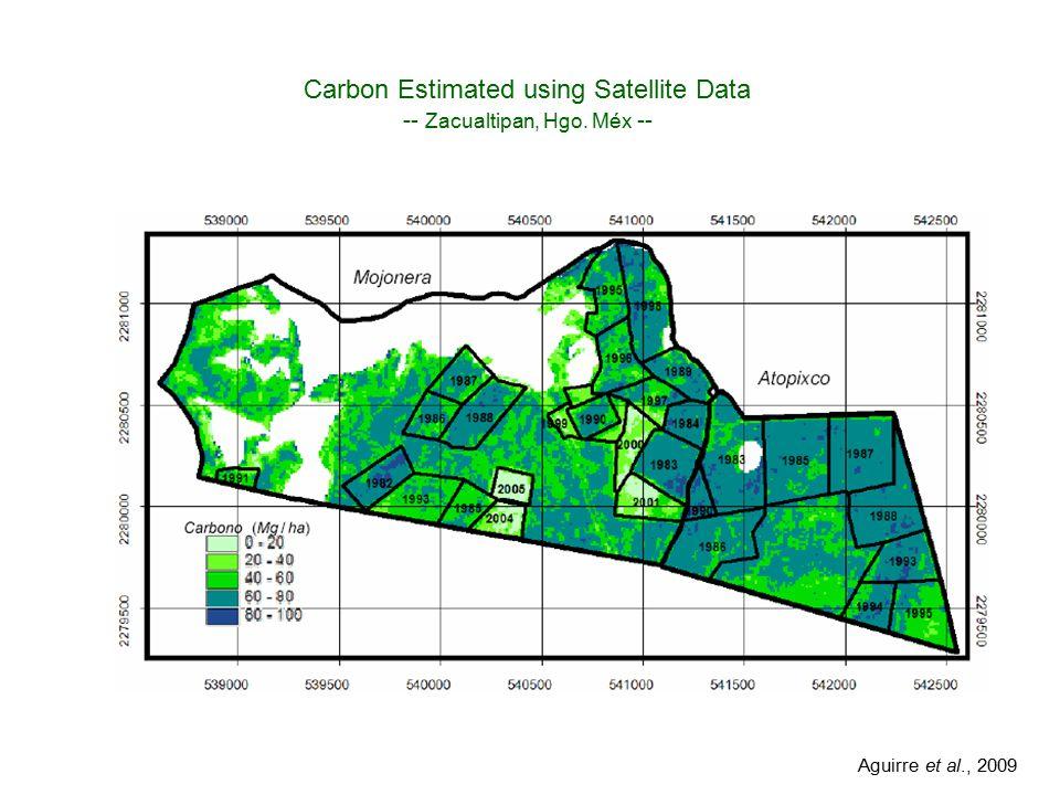 Localización del área de estudio Carbon Estimated using Satellite Data -- Zacualtipan, Hgo.