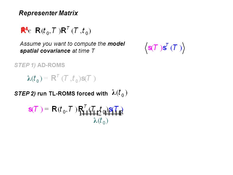 Representer Matrix Assume you want to compute the model spatial covariance at time T STEP 1) AD-ROMS STEP 2) run TL-ROMS forced with
