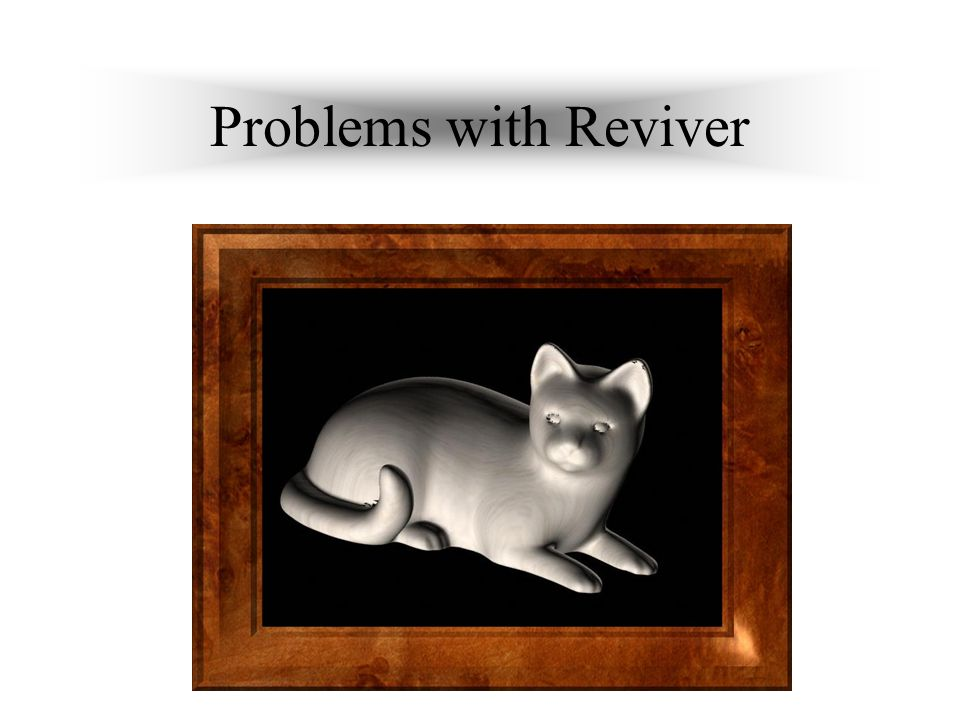Problems with Reviver