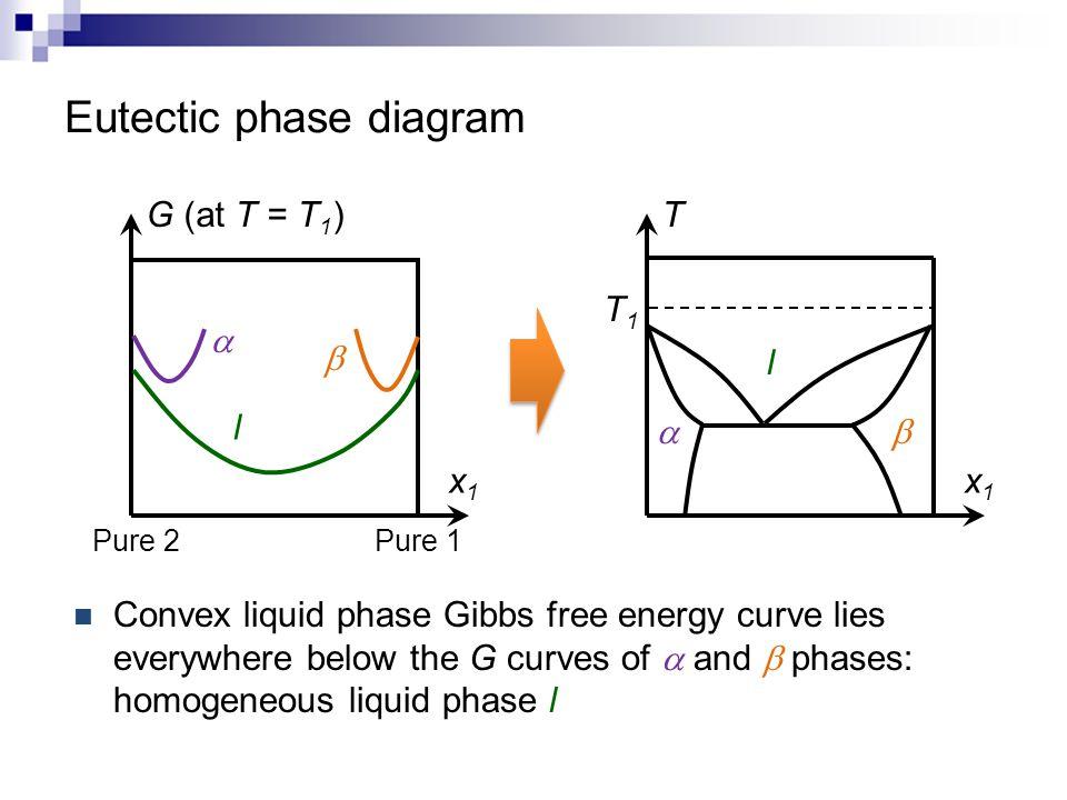 Eutectic phase diagram x1x1 T T1T1  l x1x1 G (at T = T 1 ) Pure 1 Pure 2 l    Convex liquid phase Gibbs free energy curve lies everywhere below th