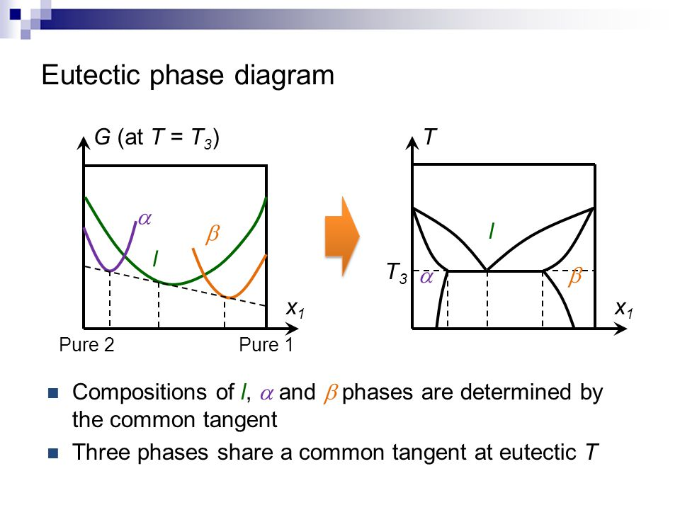 Eutectic phase diagram x1x1 T  T3T3  l x1x1 G (at T = T 3 ) Pure 1 Pure 2 l   Compositions of l,  and  phases are determined by the common tange
