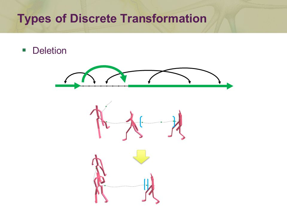  Deletion Types of Discrete Transformation