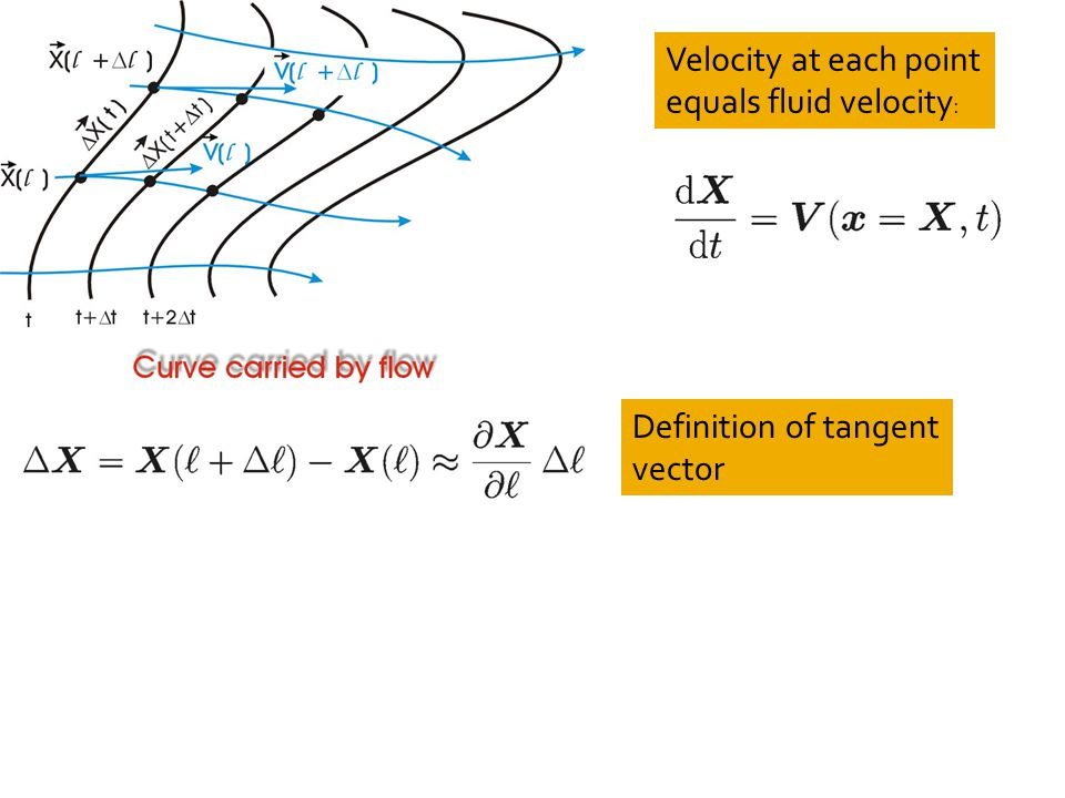Velocity at each point equals fluid velocity : Definition of tangent vector