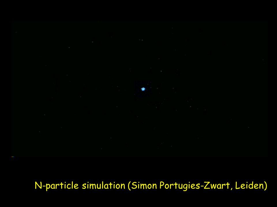 N-particle simulation (Simon Portugies-Zwart, Leiden)