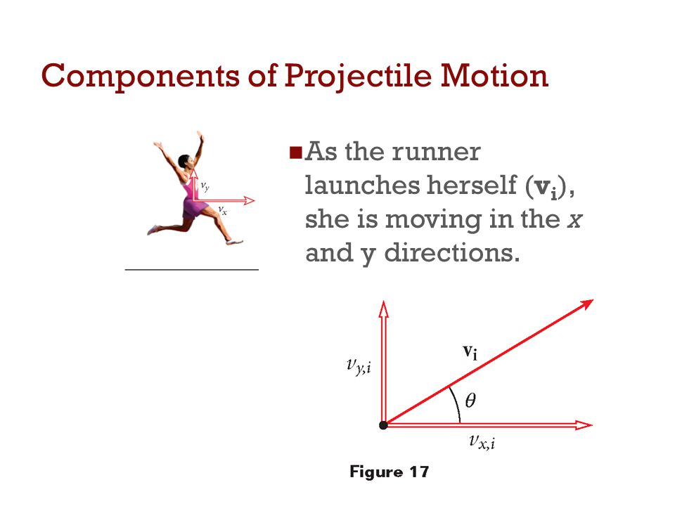 Components of Projectile Motion As the runner launches herself (v i ), she is moving in the x and y directions.