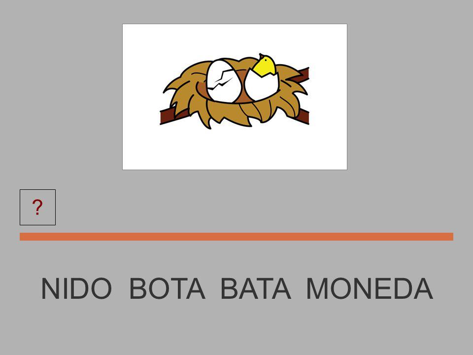 MONEDA BUTANO MONEDA NIDO