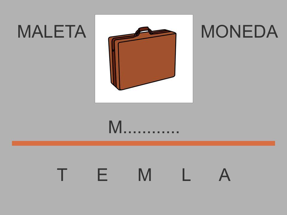 MALETA T E M L A MONEDA...............