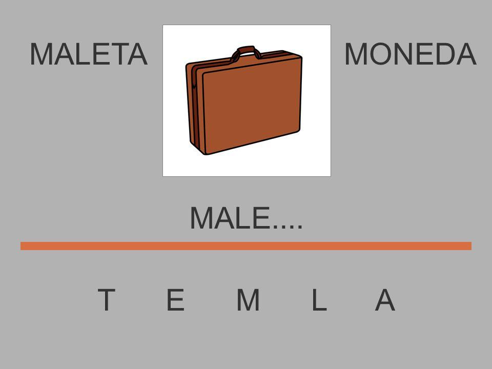MALETA T E M L A MONEDA MAL......