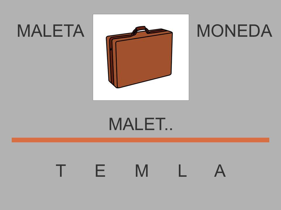 MALETA T E M L A MONEDA MALE....