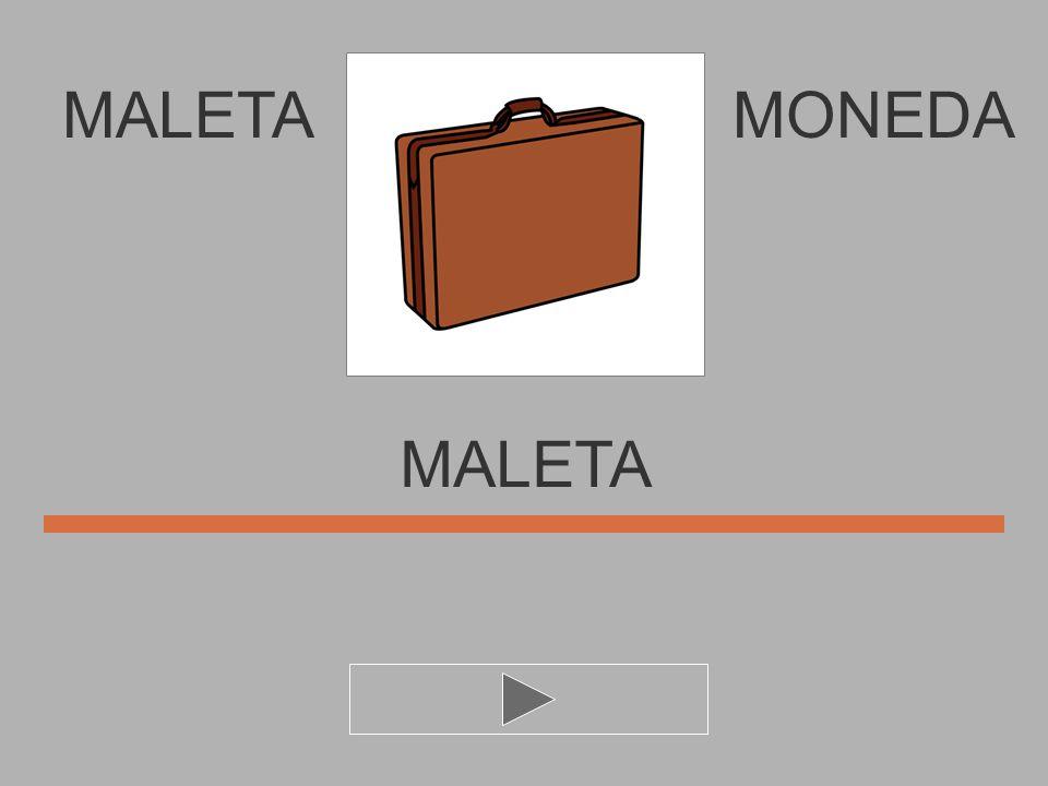 MALETA T E M L A MONEDA MALET..