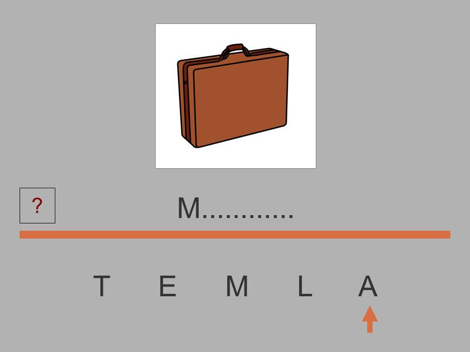 T E M L A...............