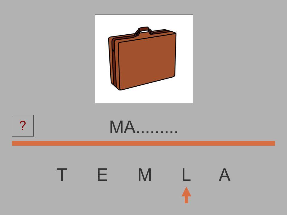 T E M L A M............ ?