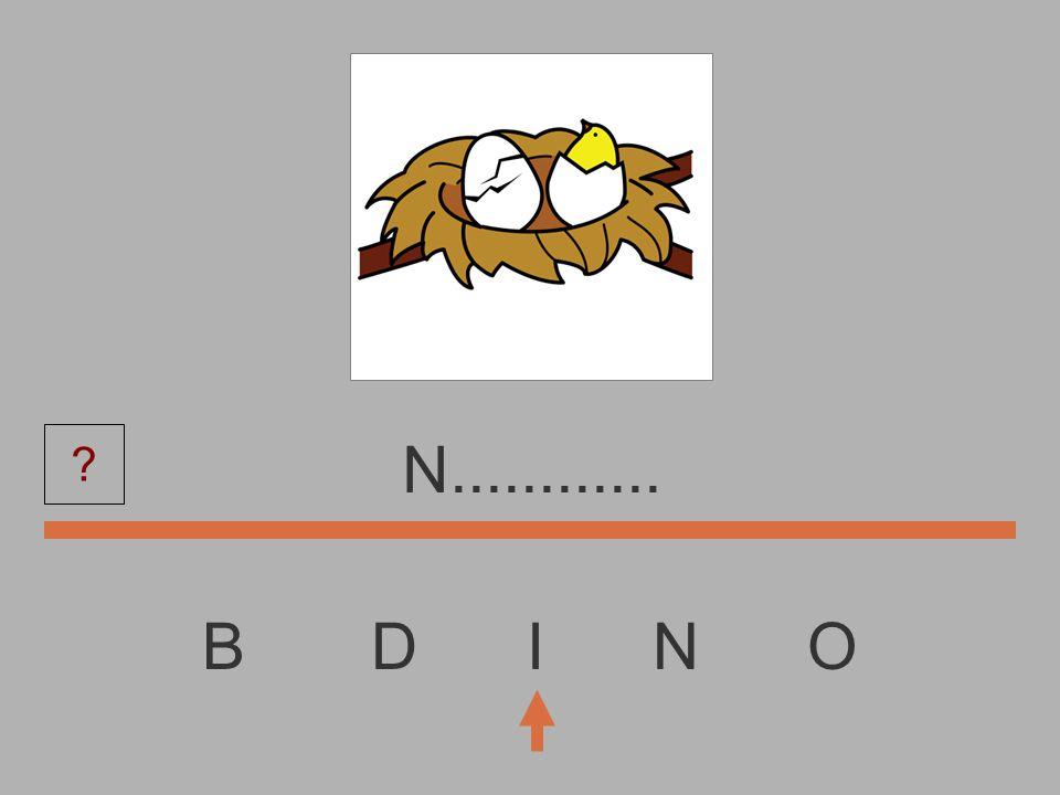 B D I N O............... ?