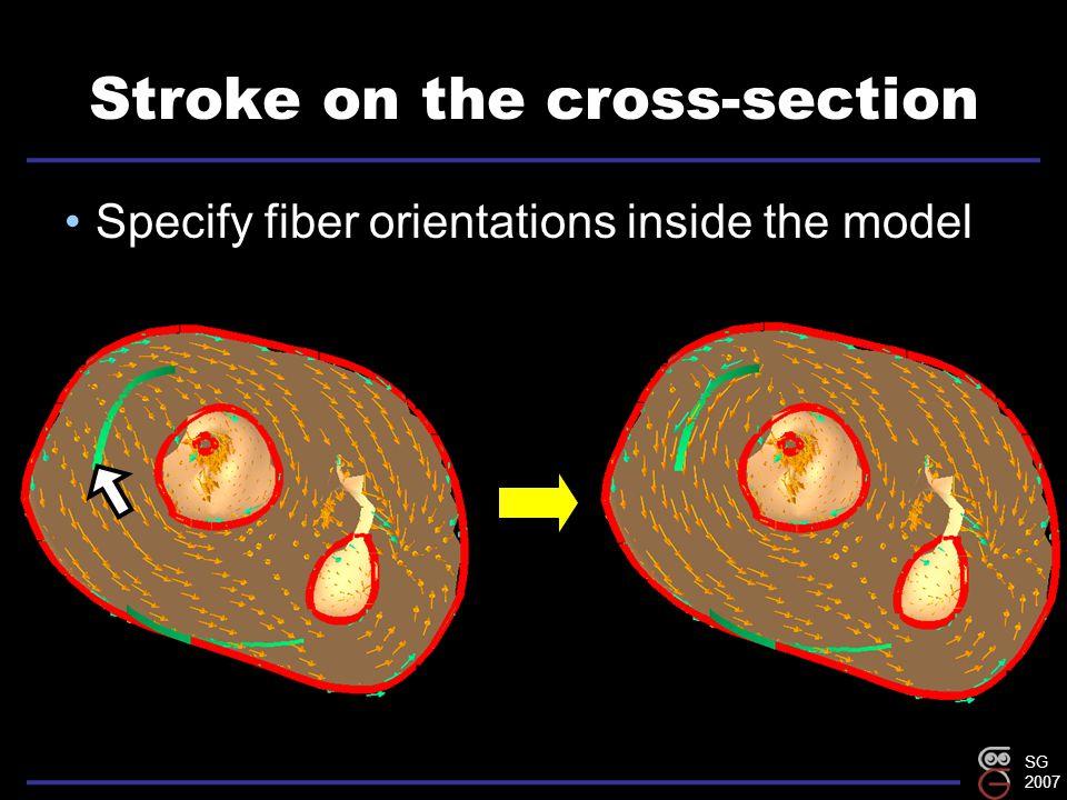 SG 2007 Stroke on the cross-section Specify fiber orientations inside the model