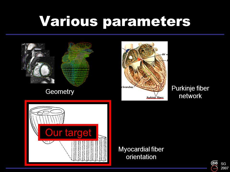 SG 2007 Various parameters Geometry Purkinje fiber network Myocardial fiber orientation Our target