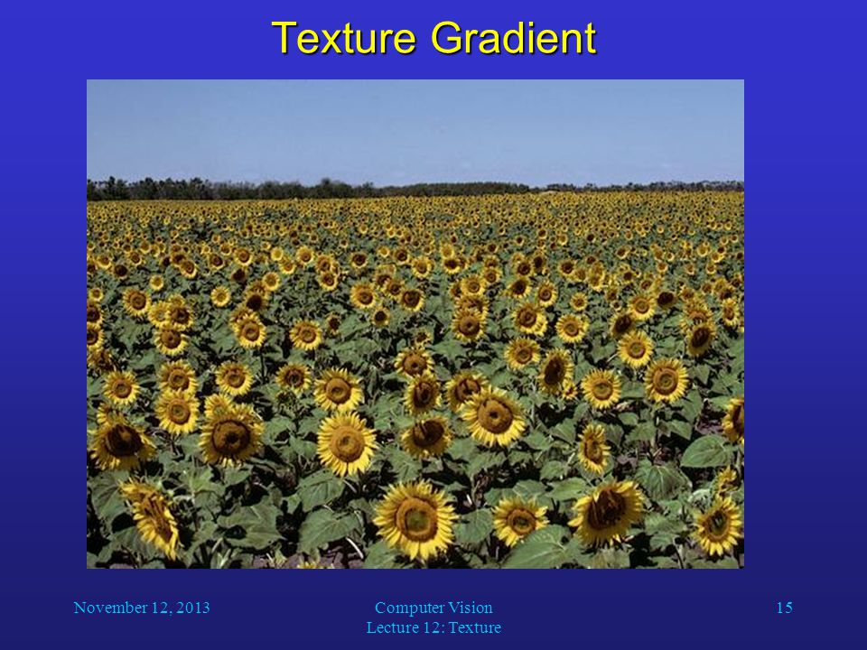 November 12, 2013Computer Vision Lecture 12: Texture 15 Texture Gradient