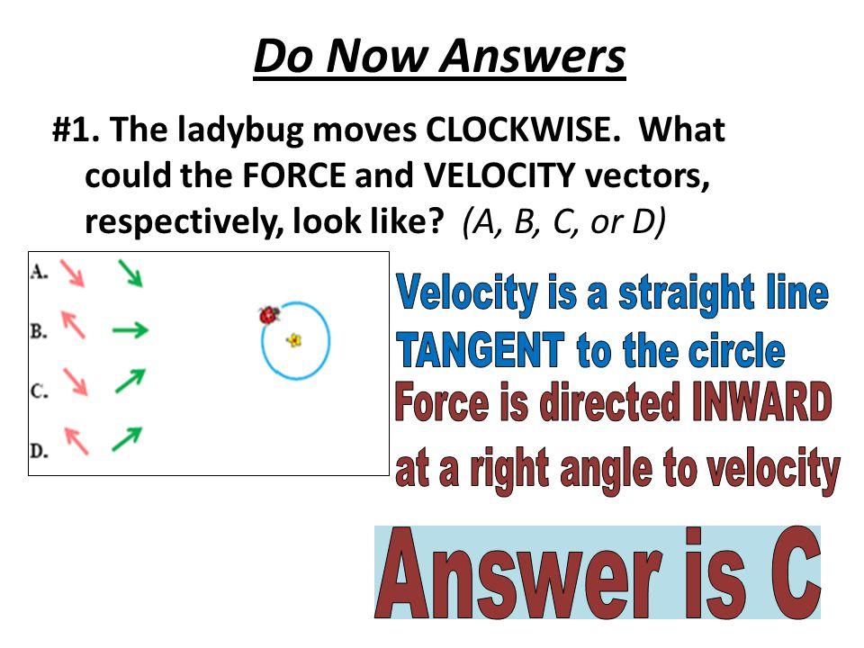 Do Now Answers #1. The ladybug moves CLOCKWISE.
