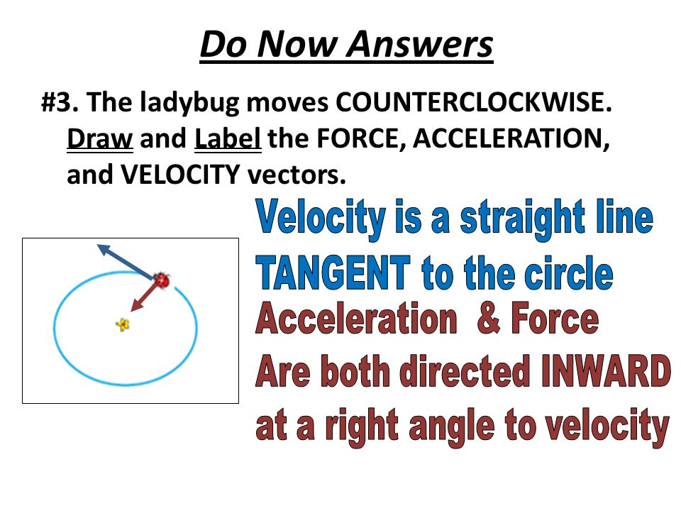 Do Now Answers #3. The ladybug moves COUNTERCLOCKWISE.