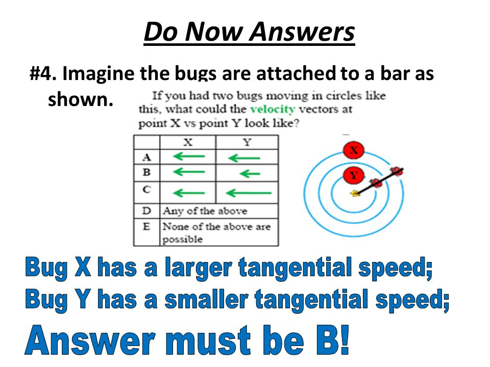 Do Now Answers #4. Imagine the bugs are attached to a bar as shown.