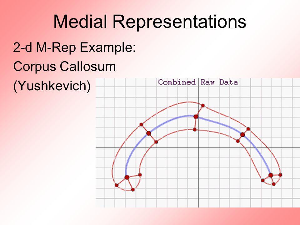 Medial Representations 2-d M-Rep Example: Corpus Callosum (Yushkevich)