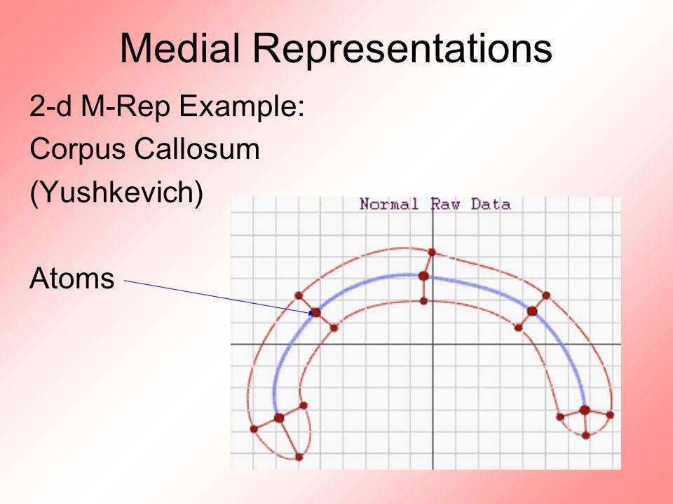 Medial Representations 2-d M-Rep Example: Corpus Callosum (Yushkevich) Atoms